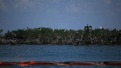 Oiled booms protect Pelican Island from the BP Gulf oil spill_09 - stock footage