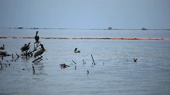 Oiled booms protect Pelican Island from the BP Gulf oil spill_11 - stock footage