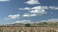 Timelapse corn harvester and sky Stock Footage