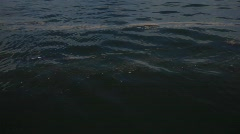 Oil slick in the waters of the Gulf of Mexico after BP oil spill_01 Stock Footage