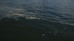 Oil slick in the waters of the Gulf of Mexico after BP oil spill_03 Stock Footage