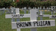 BP Gulf of Mexico Oil spill protest signage_12 Stock Footage