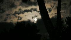 Moon Through Trees Timelapse Stock Footage