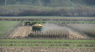 Corn harvester end of row wide view Stock Footage