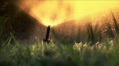 Closeup sunny sprinkler Stock Footage