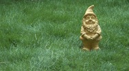 Stock Video Footage of yellow goblin in garden, 3 images