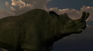 Brontotherium dinosaur, loopable Stock Footage