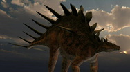 Stock Video Footage of Kentrosaurus dinosaur, loopable