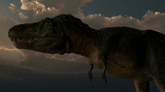 Tarbosaurus dinosaur, loopable - stock footage
