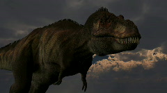 Tyrannosaurus rex dinosuar, loopable Stock Footage