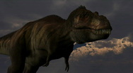 Stock Video Footage of Tyrannosaurus rex dinosuar, loopable