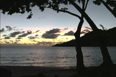 Pans dawn on Pacific island Stock Footage