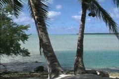 Aitutaki Palms and blue-green lagoon Stock Footage