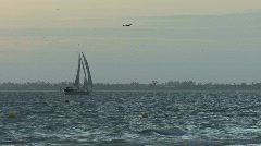 Florida Sailboat and birds - stock footage