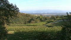Germany Black Forest landscape with vineyards Stock Footage