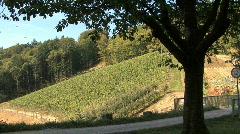 Germany Black Forest near Waldulm Stock Footage