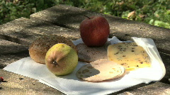 Germany Black Forest picnic food Stock Footage