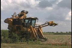 Sugar cane harvesting machine LA Stock Footage