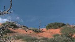 Red Kalahari dune pan Stock Footage