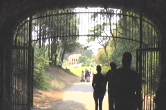 Golden Gate Park Playground Stock Footage