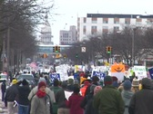 Stock Video Footage of Peace March to Michigan Capitol