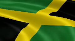 Jamaica FlagInTheWind Stock Footage