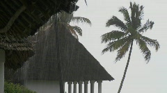 Rain falls heavily at a tropical beach resort with palms in background. Stock Footage