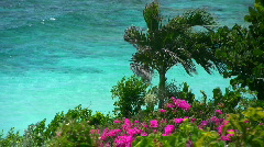 Tropical island paradise 04 Stock Footage