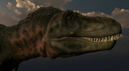 Stock Video Footage of Tarbosaurus2