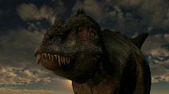 Tyrannosaurus Rex dinosaur Stock Footage