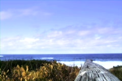 Beach Scene with color grade Stock Footage