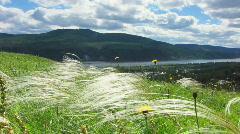 Nature - landscape 5 - stock footage