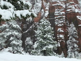 Stock Video Footage of Bryce Canyon Snowfall NTSC
