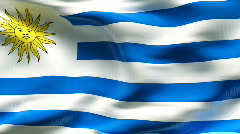Textured URUGUAY cotton flag with wrinkles and seams Stock Footage