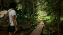 (1217) Colorado Mountains Forest Trail Woman Hiker Stream Summer Destinations Stock Footage