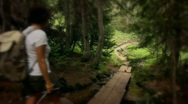 Stock Video Footage of (1217) Colorado Mountains Forest Trail Woman Hiker Stream Summer Destinations