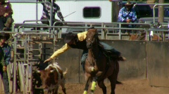 Rodeo Cowboys - Bulldogging Steer Wrestling in Slow Motion - Clip 7 of 9 - stock footage