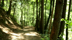 Man walking up dirt path road in woods Stock Footage