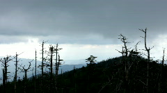 Pan of Cloudy Mountains with trees in foreground Stock Footage