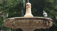 Fountain with Birds 2 Stock Footage