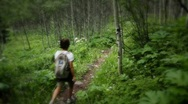 Stock Video Footage of (1224) Woman Hiking Mountain Aspen Grove Forest Summer Wildflowers