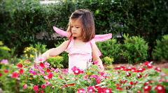 Little Garden Fairy Stock Footage