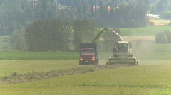 Agriculture, alfalfa harvest, #3 near head on Stock Footage