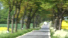 Into Focus a Tree Lined road with vehicles, Germany  - stock footage