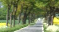 Into Focus a Tree Lined road with vehicles, Germany  Stock Footage