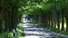Tree Lined road with vehicles, Rugen Island Germany Europe - stock footage