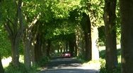 Stock Video Footage of  Tree Lined road with vehicles, Rugen Island Germany Europe