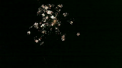 Fireworks HD Stock Footage