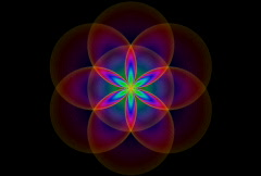 Sacred Geometry NTSC - stock footage