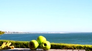 Stock Video Footage of Green Apples & Seaview
